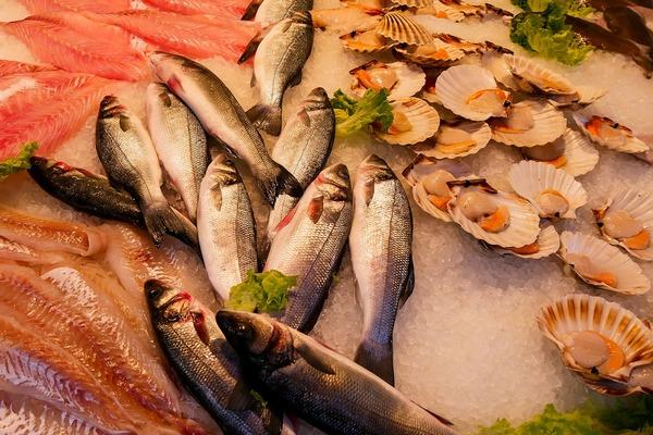 Abbattimento di prodotti ittici tramite azoto